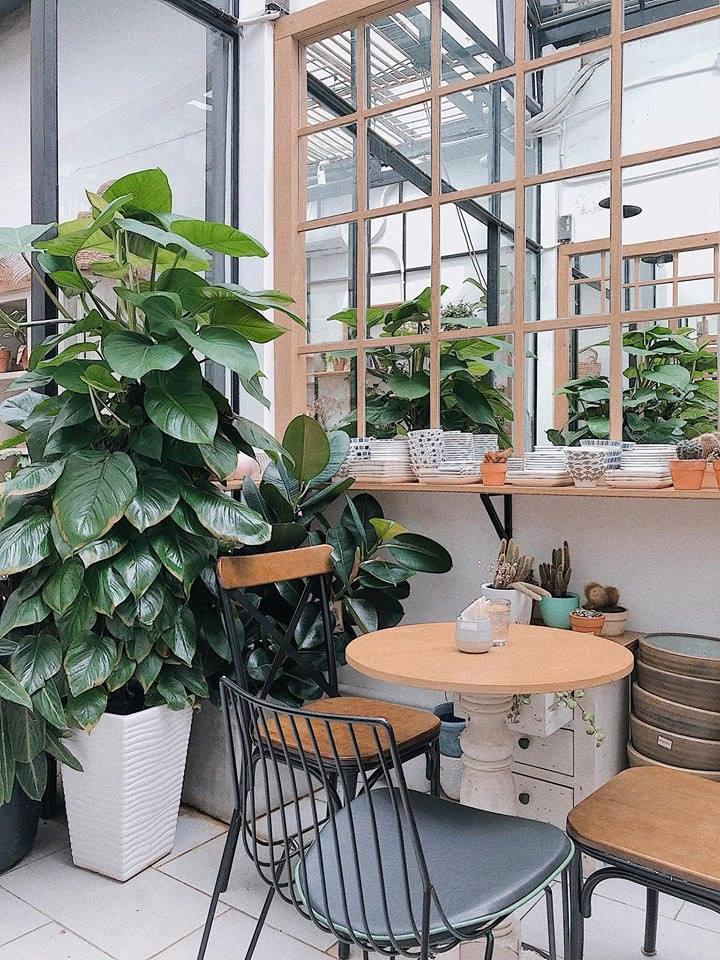 bày trí bàn ghế nội thất tại quán cafe phong cách tropical