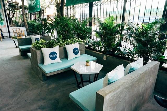 thiết kế quán cafe nhiệt đới sử dụng nhiều cây xanh
